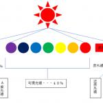【カラータイプ®×美容】~美容と紫外線の関係~